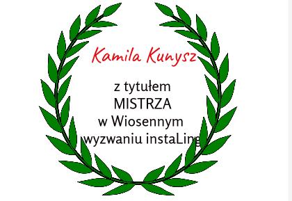 Kamila Kunysz mistrzem instaling